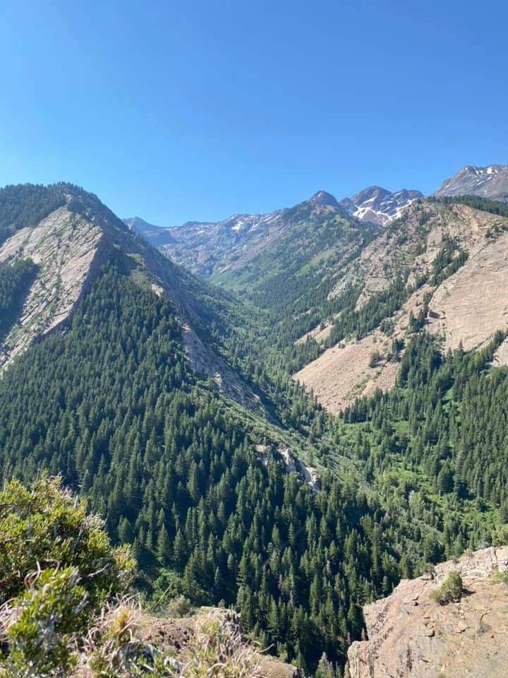 The view from the top of Lower Mill B North Fork Trail in Big Cottonwood Canyon.